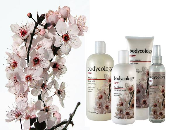 bodycology, Spring is in the Air