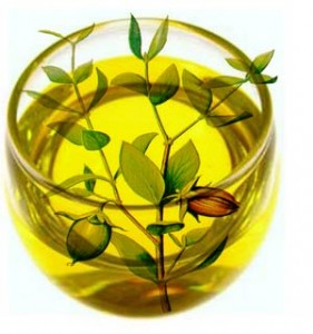 jojoba oil, benefits of jojoba oil, uses of jojoba oil, jojoba oil hair